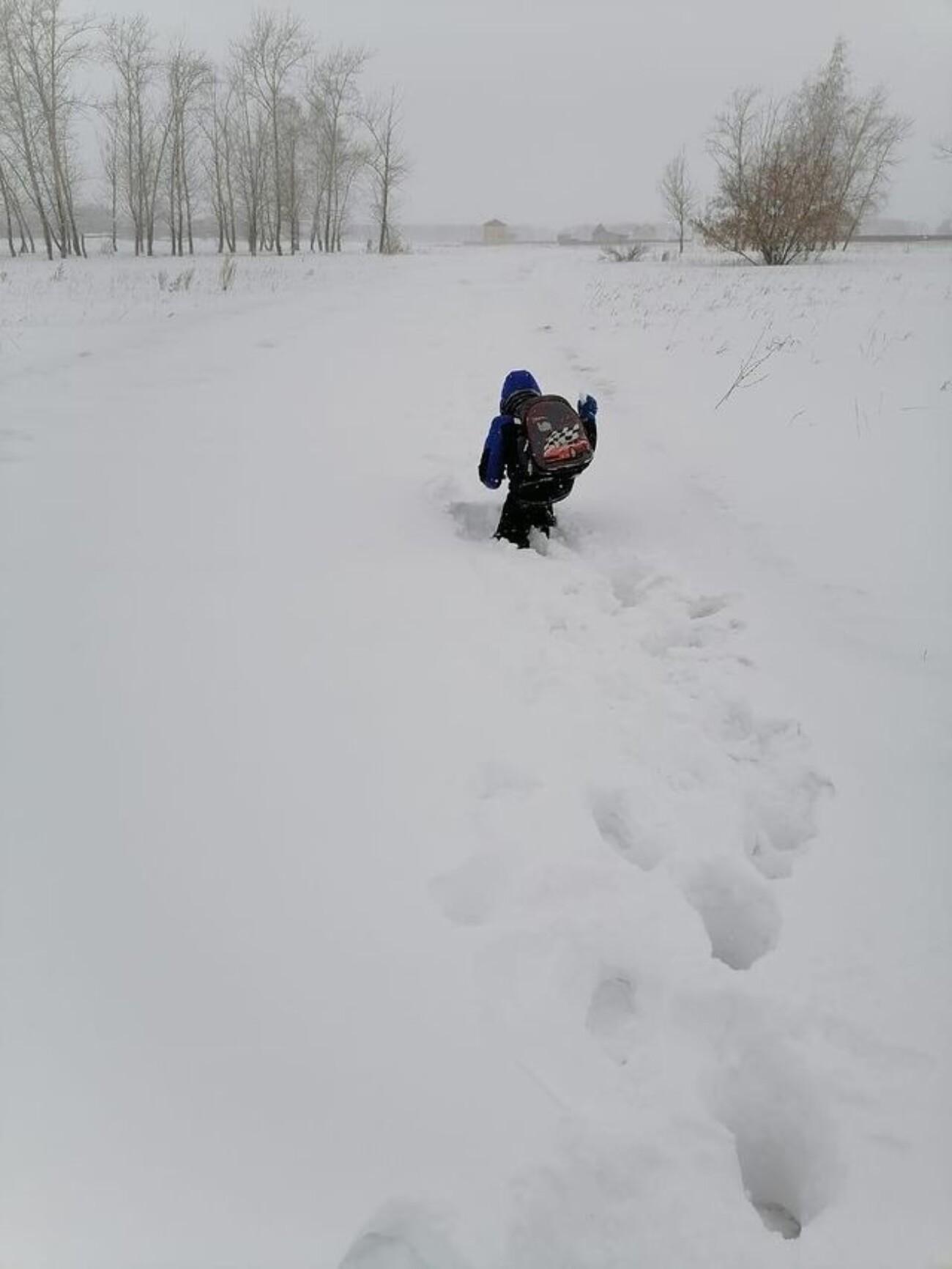 СК начал проверку фото, на которых дети из села под Омском ползут по сугробам в школу и детский сад