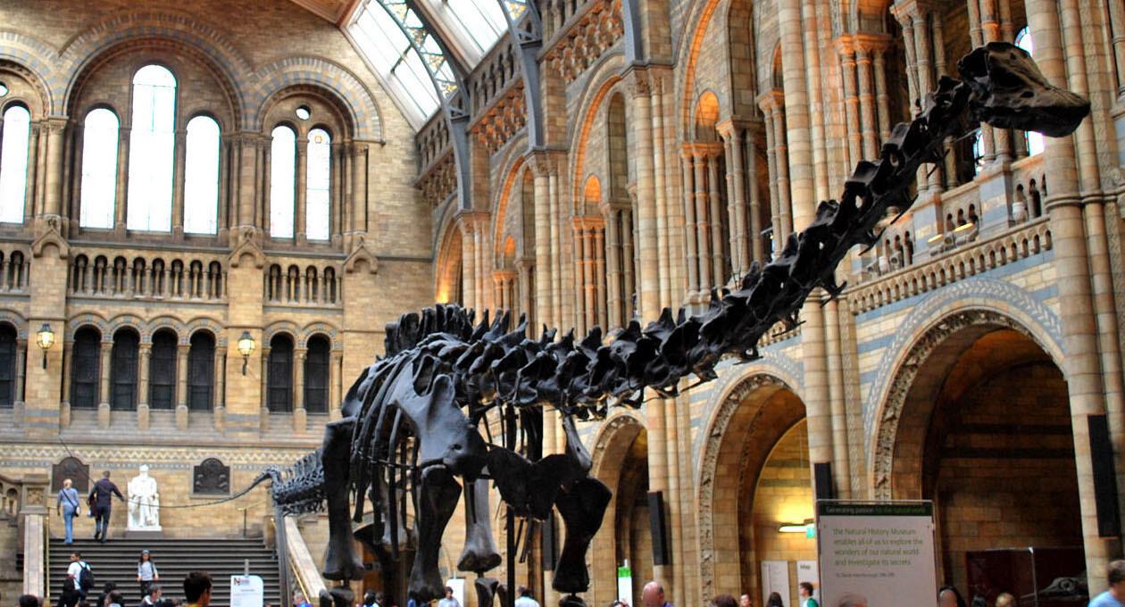 Твиттер-баттл двух главных музеев Лондона