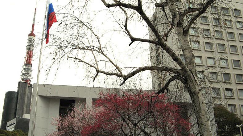 Посольство РФ в Японии любит общаться в Твиттере. С помощью мемов и шуток про школьников