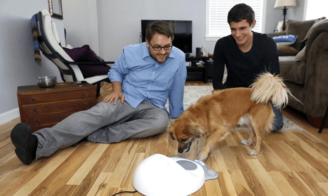 Стартап CleverPet продал тысячи панелей для разговоров с животными: чем он занимается и как работают его устройства