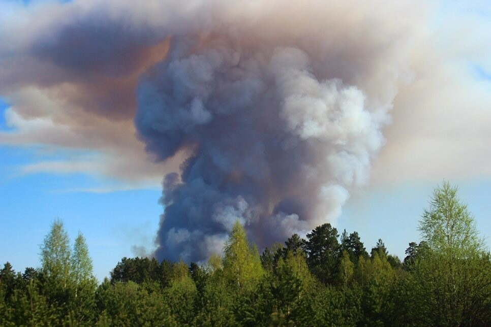Площадь пожара в посёлке в Удмуртии выросла в пять раз. На территории ввели режим ЧС