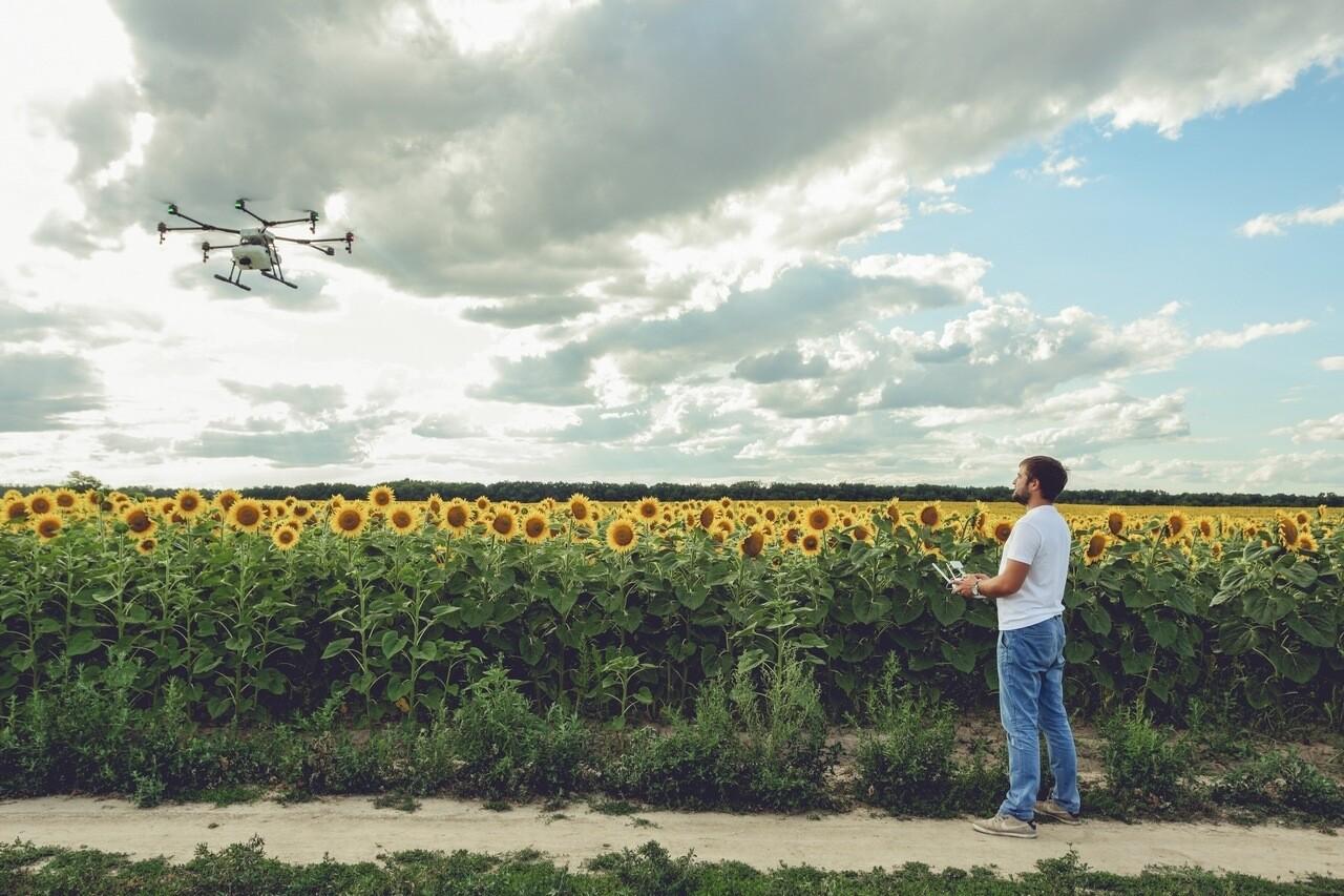 Десятки миллионов гривен выручки на 2,7 млн гектаров земли: история внедрения ИТ в агросектор от SmartFarming